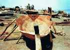 Boat Yard in Abou Rouf at the Nile in Omdurman